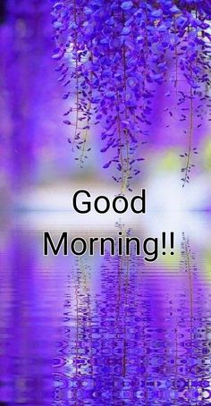 Have a terrific tuesday tuesday tuesday quotes happy tuesday tuesday quote… tuesday Humor Have a ter Good Afternoon My Love, Good Morning Happy Saturday, Good Morning Dear Friend, Good Morning Funny, Good Morning World, Good Morning Flowers, Morning Morning, Good Morning Beautiful Quotes, Good Morning Images Hd