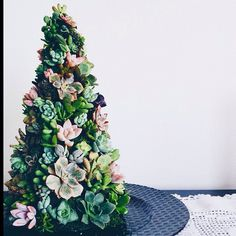 Succulent Christmas tree by ROTDcreations
