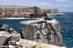 Galápagos http://mytravel.mypage.cz