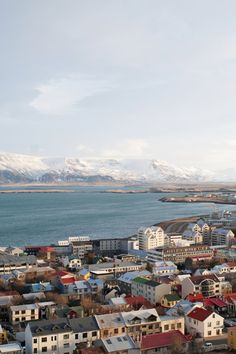 101 hotel - Reykjavik, Iceland - 101 Hotel's central location makes it a great base for exploring Reykjavik on foot.Consider renting a car; taxis to/from the international airport are about $122 each way