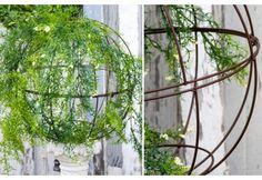 DIY | Topiary | Topiaries
