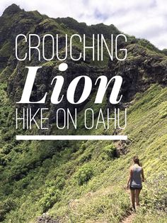 Crouching Lion Hike on Oahu's north shore is kind of off the beaten path, a little bit hidden, and it brings you to see views of both the ocean and some pretty gorgeous mountains. So basically, it's perfect.