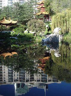 Chinese Garden of Friendship,SYDNEY, ANZHELA TOMACHINSKAYA