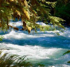 Inspiring you to take your journey. Washington, Journey, The Journey, Washington State