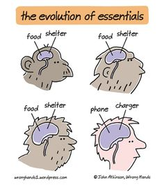 The evolution of essentials.