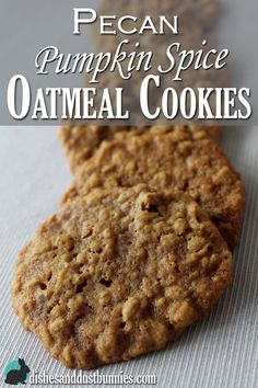 Pecan Pumpkin Spice Oatmeal Cookies from dishesanddustbunnies.com