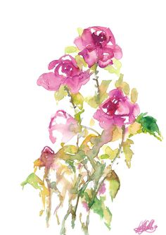 Excited to share the latest addition to my #etsy shop: Watercolour Garden Roses Original Watercolour Artwork Pink Floral Design Home Decor Wall Decoration Abstract Flowers Boho Chic Girls Room http://etsy.me/2twvgP4 #art #painting #pink #anniversary #green #watercolour