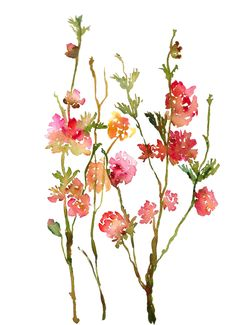 Tattoo inspiration//Fresh Pick Roses No. 2, Fine Art Print from Watercolor Painting, Watercolor Flowers