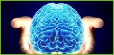 bio_cerebro_inconsciente_00