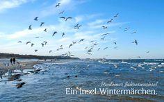 Erfrischende Erholung beim Insel-Wintermärchen Usedom