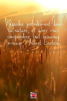 """""""Regardez profondément dans la nature, et alors vous comprendrez tout beaucoup mieux"""" - Albert #Einstein #citation Citations D'albert Einstein, Citation Einstein, Einstein Quotes, Citation Nature, New Quotes, Inspirational Quotes, Looking Forward To Seeing You, I 9, Good Morning Greetings"""