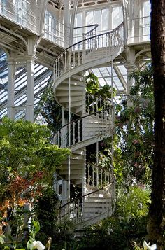 stairway to heaven Stairway To Heaven, Beautiful Homes, Beautiful Places, Beautiful Pictures, Beautiful Bride, Glass House, Architectural Digest, Architectural Trees, Conservatory