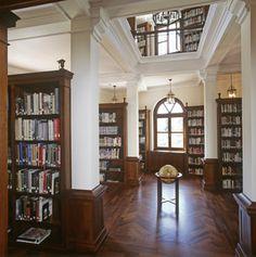 Home library fantasy