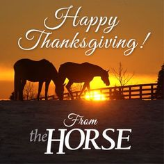 Happy Thanksgiving from everyone at The Horse! #thanksgiving: