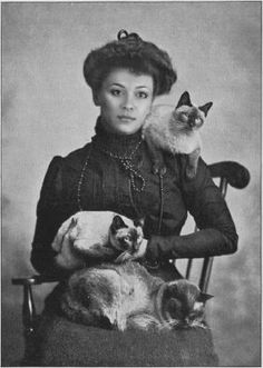 Danielle Feliciano, photoshopped as the mysterious siamese cat lady