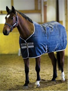 42 Best Horse Rugs Images