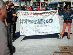 NGOs sue Monsanto EU food safety watchdog over pesticide - The Express Tribune