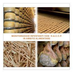 Disinfestazione industria alimentare e Monitoraggio HACCP in ambito industriale. http://www.bioecologysrl.it/sevizi_disinfestazione/disinfestazione_%20Reggio%20Emilia.html/disinfestazione_%20Reggio%20Emilia.html