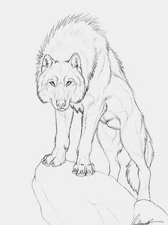 Adonis by Goldenwolf. on deviantART - Skizzen zeichnen - Art Sketches Animal Sketches, Art Drawings Sketches, Animal Drawings, Cool Drawings, Pencil Drawings, Drawing Art, Drawing Ideas, Drawing Commissions, Wolf Sketch