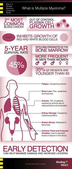 march is myeloma awareness month, myeloma awareness, myeloma infographic, what is myeloma infographic, what is multiple myeloma infographic, what is multiple myeloma