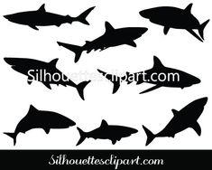 Shark Silhouette Vector elements, layered and isolated have EPS, PNG and JPEG files available upon an easy purchase ideal for ocean and fish vector graphics Shark Silhouette, Silhouette Painting, Silhouette Clip Art, Fish Graphic, Fish Vector, Learn To Draw, Vector Graphics, Vector Design, Silhouettes