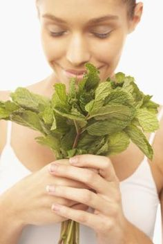 Health Benefits of Spearmint Tea: A medicinal treatment for digestive and respiratory disorders. Healing Herbs, Medicinal Herbs, Natural Healing, Tea Benefits, Health Benefits, Benefits Of Spearmint Tea, Herbal Remedies, Natural Remedies, Peppermint Tea