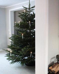"""Gefällt 535 Mal, 59 Kommentare - Sara Alfredsson (@saraalfredason) auf Instagram: """"Ljuskronan är färdigpyntad här hemma. Den består av mjuken, trollhassel, kryptomeria, och långa…"""""""