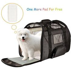 Juxcity Pet Carrier Soft Sided  Side and Top Mesh Pet Travel Carriers Portable Bag for Puppies and Small Pets AirlineApproved BLACK ** Click for Special Deals #DogToys