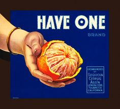 Have One Citrus Fruits. #crateart.jpg