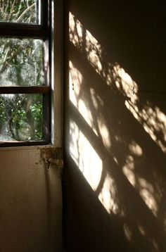 Image result for shadows on window panes at night