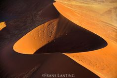 Wind-sculpted sand dunes (aerial), Namib-Naukluft National Park, Namibia by Frans Lanting