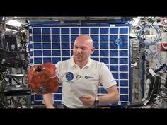 Flat Earth - ISS Studio Exposed - YouTube