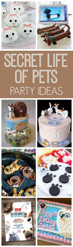 17 Secret Life of Pets Party Ideas | Pretty My Party