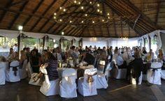 beautiful wedding in the Olive Lapa
