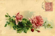 """""""Comment peindre les Roses de Catharina Klein (1861-1929) ? Véronique Marcovitch – Rouillay, Heritage Designer, répond à cette question par la mise au point d'une technique en Direct Painting"""".  La citation est présente, il ne s'agit bien sûr pas d'un plagiat mais d'une copie, objet d'étude."""