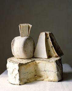 Judy Casey - Photographers - Maria Robledo - Food