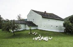 foto.kunst.kultur - Jurahaus: Eibwang