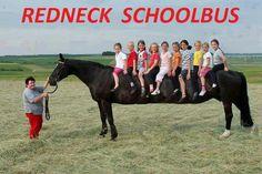 Redneck schoolbus, horse
