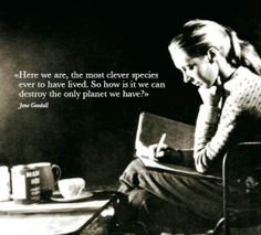 Here we are, the most clever species ever to have lived. So how is it we can destroy the only planet we have? Jane Goodall
