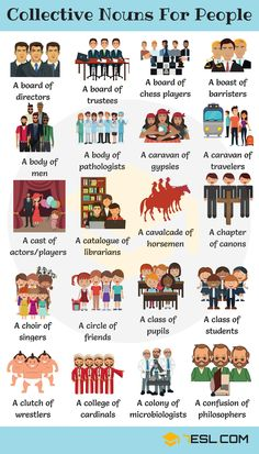 Collective Nouns For People in English - 7 E S L Groups of people! Learn extensive list of collective nouns for people to bolster your vocabulary in English with example sentences and ESL printable worksheets. English Grammar Worksheets, Learn English Grammar, English Vocabulary Words, Learn English Words, Grammar And Vocabulary, English Idioms, English Language Learning, English Study, English Lessons