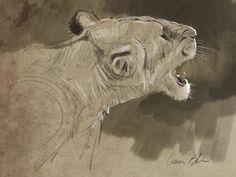 Animal Art Gallery - The Art of Aaron Blaise