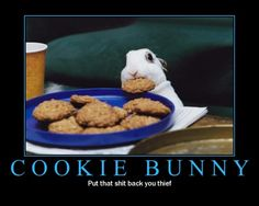 COOKIE THIEF!