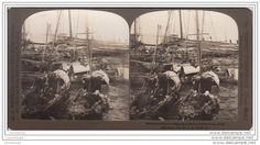 CHINA HONG KONG / STEREOGRAPH 1901 NATIVE BOATS AND SHIPPING IN HARBOR - Delcampe.net