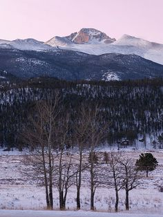 Longs Peak - Winter