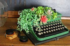 Upcycle an old typewriter into a cute succulent planter. And the best part is we use faux succulents from the craft store so no green thumb required! Vintage Suitcases, Vintage Typewriters, Vintage Tins, Upcycled Vintage, Vintage Luggage, Vintage Market, Royal Typewriter, Antique Typewriter, Faux Succulents