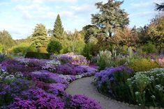 Fall blooms at Picton Garden