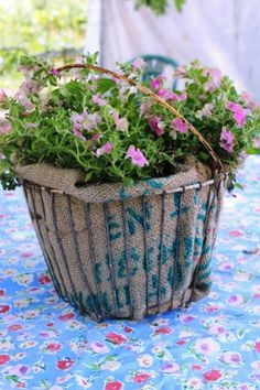 Remove the plant from the pot and carefully place it in the basket Garden Basket, Plant Basket, Basket Planters, Egg Basket, Flower Planters, Flower Pots, Container Flowers, Container Plants, Container Gardening