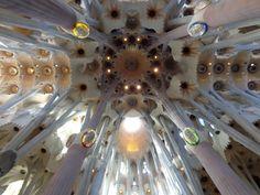 16 Sagrada Família In Barcelona Ideas Sagrada Familia Chief Architect Gothic Architecture