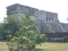 the ruins of Tulum in Mexico. Was there 2/16/12.