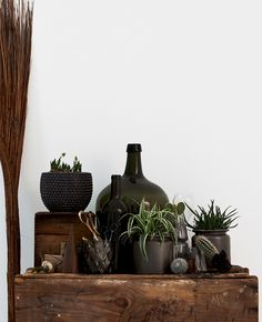 Plants and old jugs plus weathered wood. http://bloodandchampagne.com/images/bloodandchampagne3593.jpg